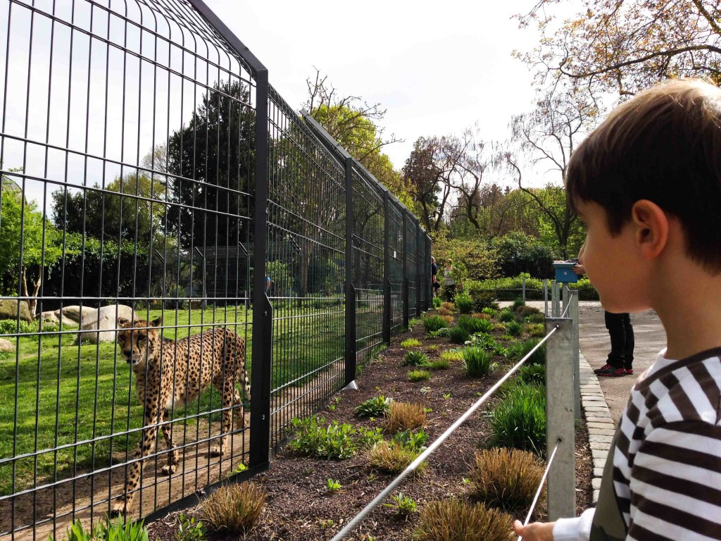 Alemanha, Stuttgart, Zoológico, Jardim Botânico, Crianças, Wihelma - Foto Nathalia Molina @ComoViaja (32)