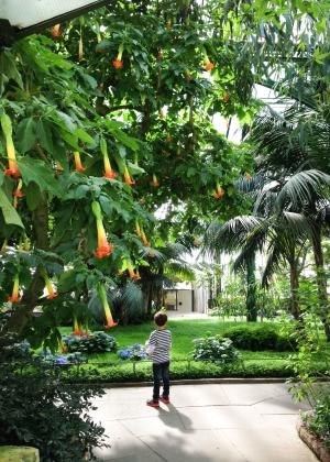 Alemanha, Stuttgart, Zoológico, Jardim Botânico, Crianças, Wihelma – Foto Nathalia Molina @ComoViaja (9)