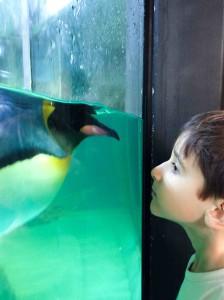 Munique, Alemanha, Zoológico, Crianças, Hellabrunn - Foto Nathalia Molina @ComoViaja (12)