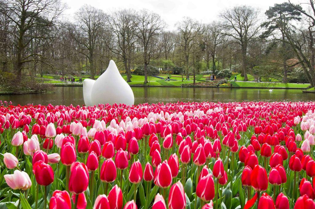 Keukenhof, Holanda, Flores - Foto Divulgação (5)